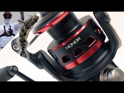 I Shouldn't Love This Reel (but I Do!) | Piscifun Honor 6 Month Comprehensive Review