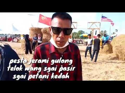 Kuda Naik Jerami Gulong Sgai Pasir Sgai Petani Kedah Youtube