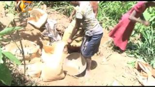 Various children engage in Gold mining against the law
