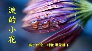 《淚的小花》 姜育恆 ♥•♪♫♪*