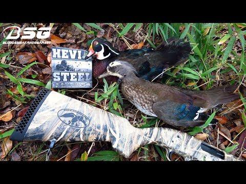 Opening Day Success!!! Duck Season (11-18-17) **Duck Hunting In SC** Wood Ducks