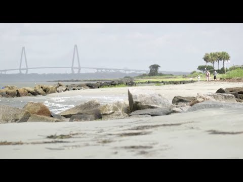 Local Impacts of Climate Change in Charleston, SC | Sea Change