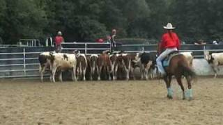 Concours Cattle Penning 2009