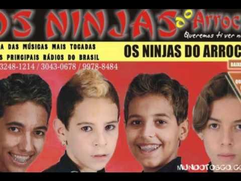cd os ninjas do arrocha