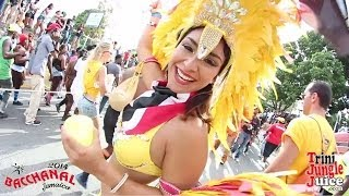 Bacchanal Jamaica Carnival 2014 Road March