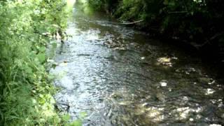 Tarján-patak Zagyvapálfalván,Salgótarjánban