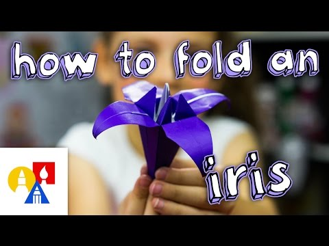 How To Fold An Origami Iris