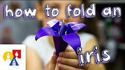 How To Fold An Origami Iris