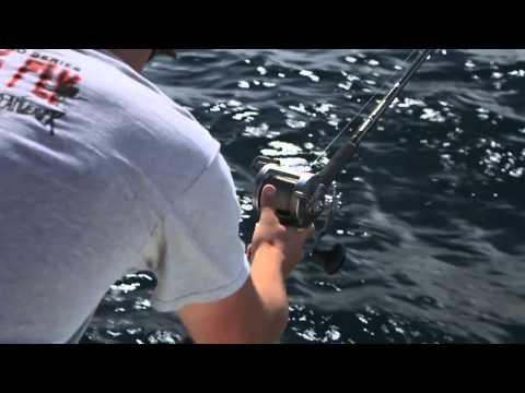 Tips for Trolling King Salmon on Lake Michigan