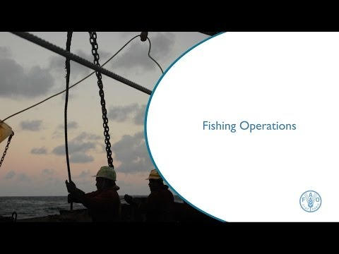 Fishing Operations