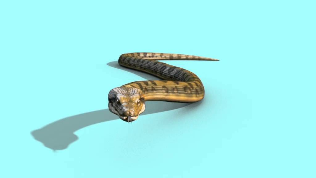 Green Screen Anaconda Snake Strip Attacks Dies - Footage ...