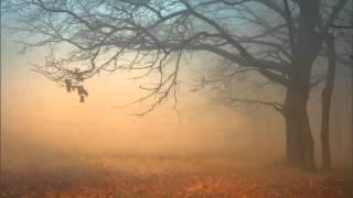gustafi jesen II