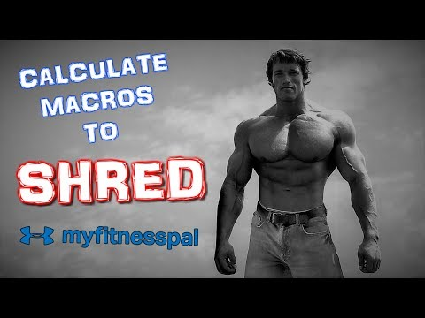how-to-calculate-your-macros-in-myfitnesspal-to-burn-fat-(summer-2019)