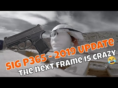 Sig P365 😮 - The first one sucked, 2019 model update - also, we get