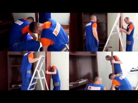 Москва 24: Дарион Авто - переезд без головной боли