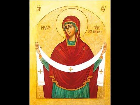 Marian Clergy Retreat 1: She's More Than Worth It ~ Fr Armand de Malleray, FSSP
