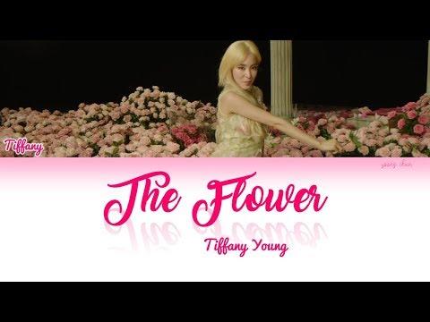 Tiffany Young – The Flower Lyrics