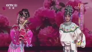 《青春戏苑》 20200731 戏韵芬芳| CCTV戏曲 - YouTube