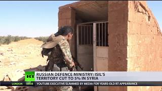 ISIS terrorists control less than 5% of Syria – Russian MoD