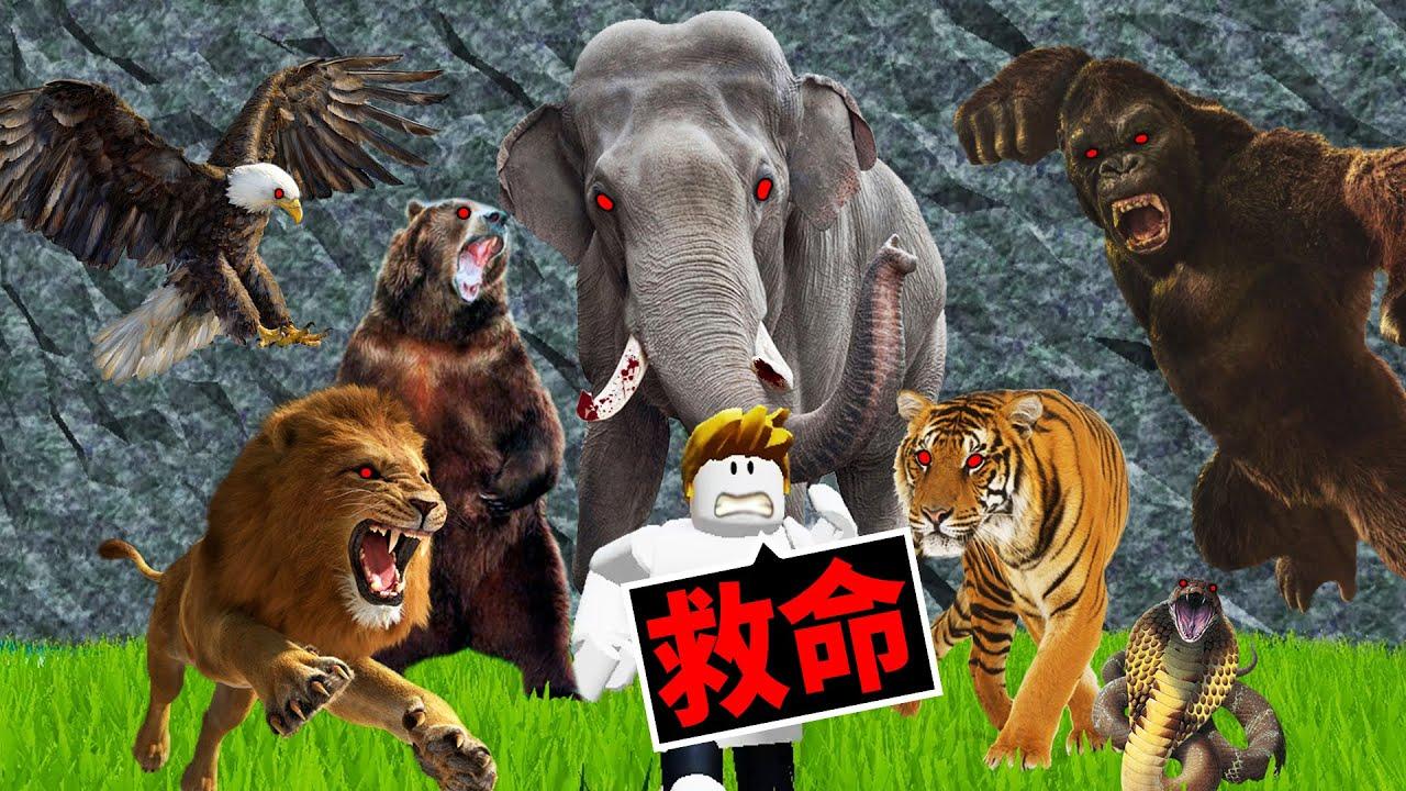 逃離到處都是「吃人動物」的危險動物園!我能活著嗎?!【Roblox 機械方塊】