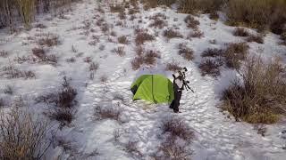 The Green Tent: Winter Moose Teaser