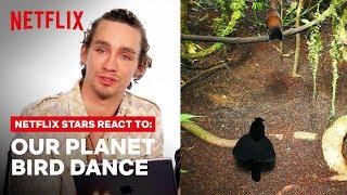 Lana Condor + Netflix Stars React to Dancing Birds   Our Planet   Netflix
