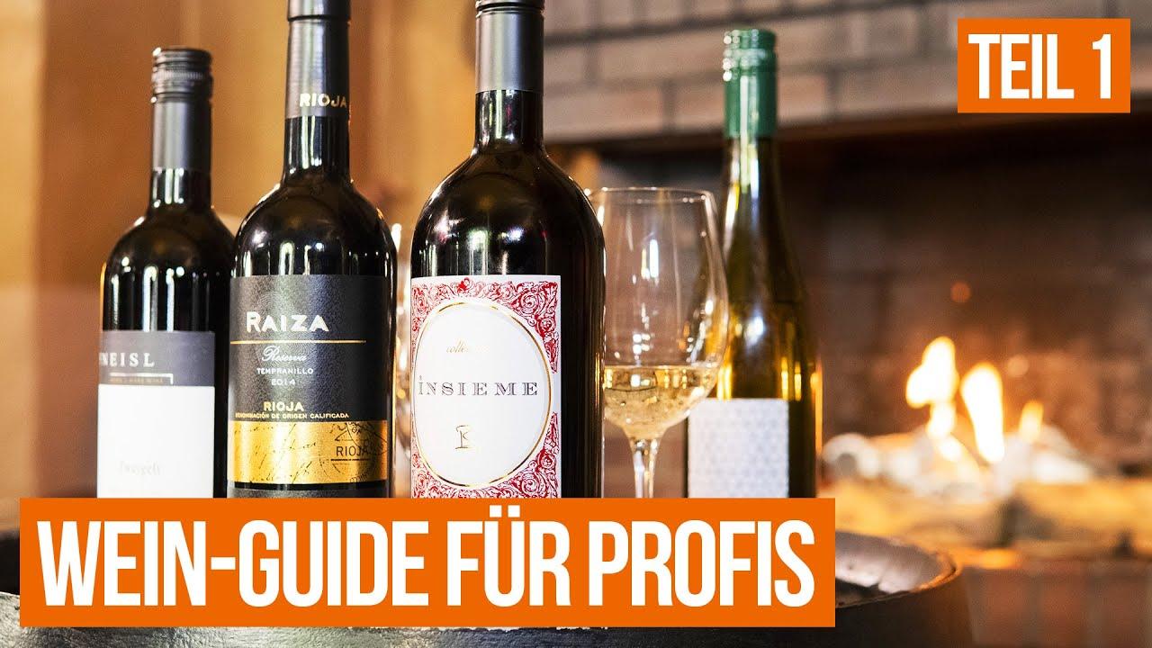 Download Teil 1: Grundlagen   Der große Wein-Guide für Gastro-Profis