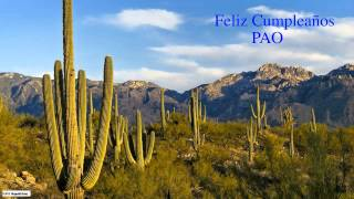 Pao  Nature & Naturaleza - Happy Birthday