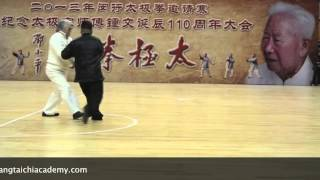 Fu Sheng Yuan and Fu Qing Quan - Yang Family Tai Chi Push Hands