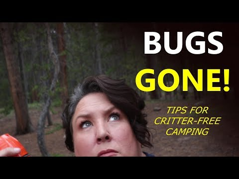 Make Your CAMPSITE a BUG-FREE ZONE! Tips You Need This Summer