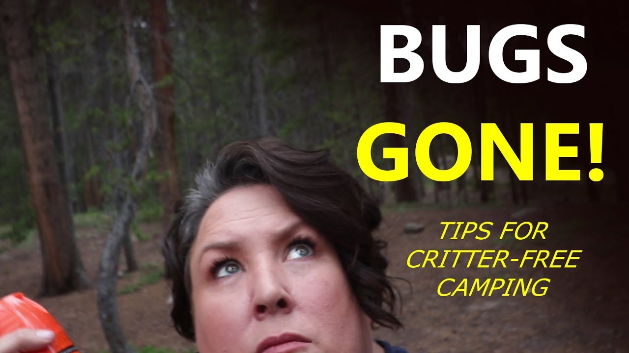 make-your-campsite-a-bug-free-zone-tips-you-need-this-summer