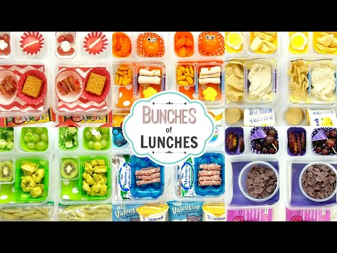 School Lunch Ideas for KIDS + What They Ate | Colors | BUNCHES of LUNCHES