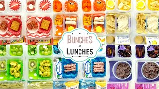 Colorful School Lunch Ideas for KIDS + What They Ate | K, 1st grade, 2nd Grade | BUNCHES of LUNCHES
