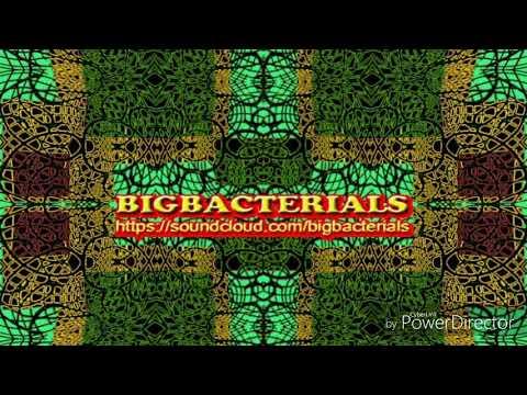 BigBacterials - book of the dead (original mix)