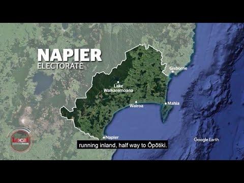 Napier electorate explained | Local Focus