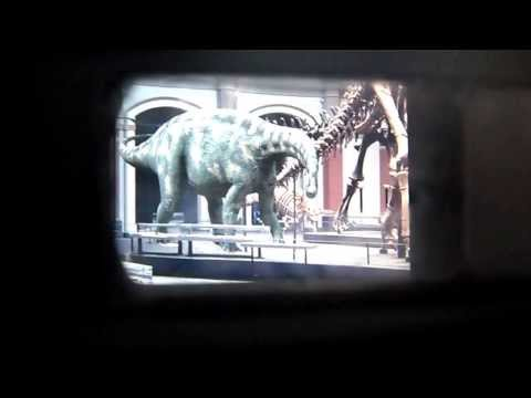 Museum für Naturkunde Berlin Интерактивные динозавры