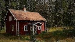 Mikko Tapio - Muistoja vain