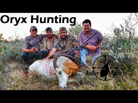 Hunting Exotics In Texas - Oryx Hunting With .300 Win Mag Part 2
