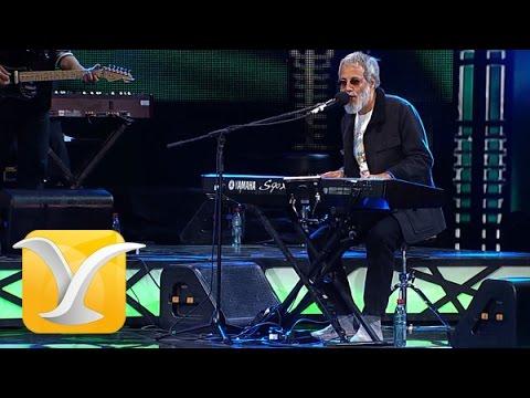 Yusuf Cat Stevens, Sitting, Festival de...