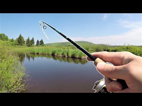 TROUT Fishing For Rainbow & Brook Trout