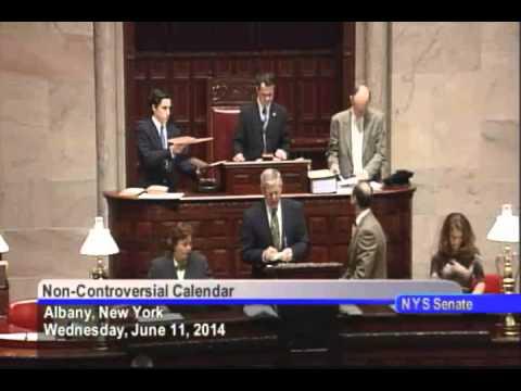 New York State Senate Session - 06/11/14