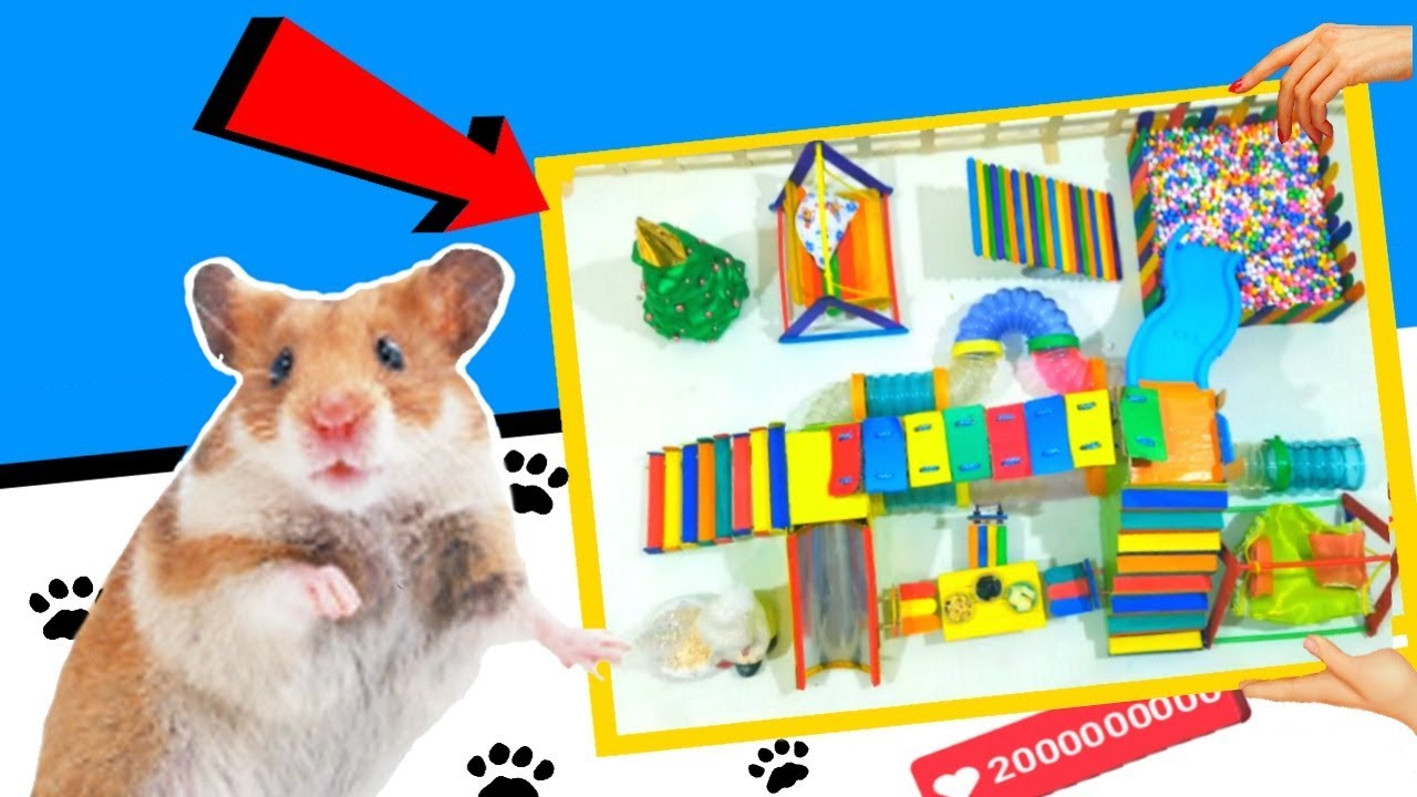 ? DIY: HOW to make house with popsicle stick for hamster cage | Funny Cute hamster maze