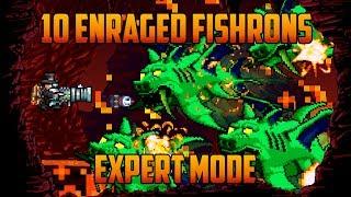 Terraria - 10 Enraged Duke Fishrons in Hell (Bug)