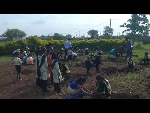 Tree Plantation by RTM Primary School students in School premise