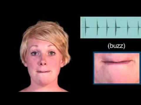 Global Education   Luyện nói tiếng Anh   BUZZ – phát âm thế nào