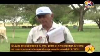 Agrovisión: Raza Carora 2da Parte