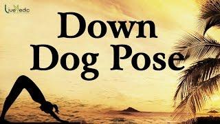 Downward-Facing Dog Pose / Adho Mukha Svanasana - Yoga For Women