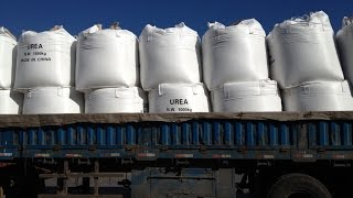Technical/Industrial Grade UREA supplier-UNITED CHEMICAL