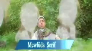 المولد النبوي الشريف باللغة الكردية