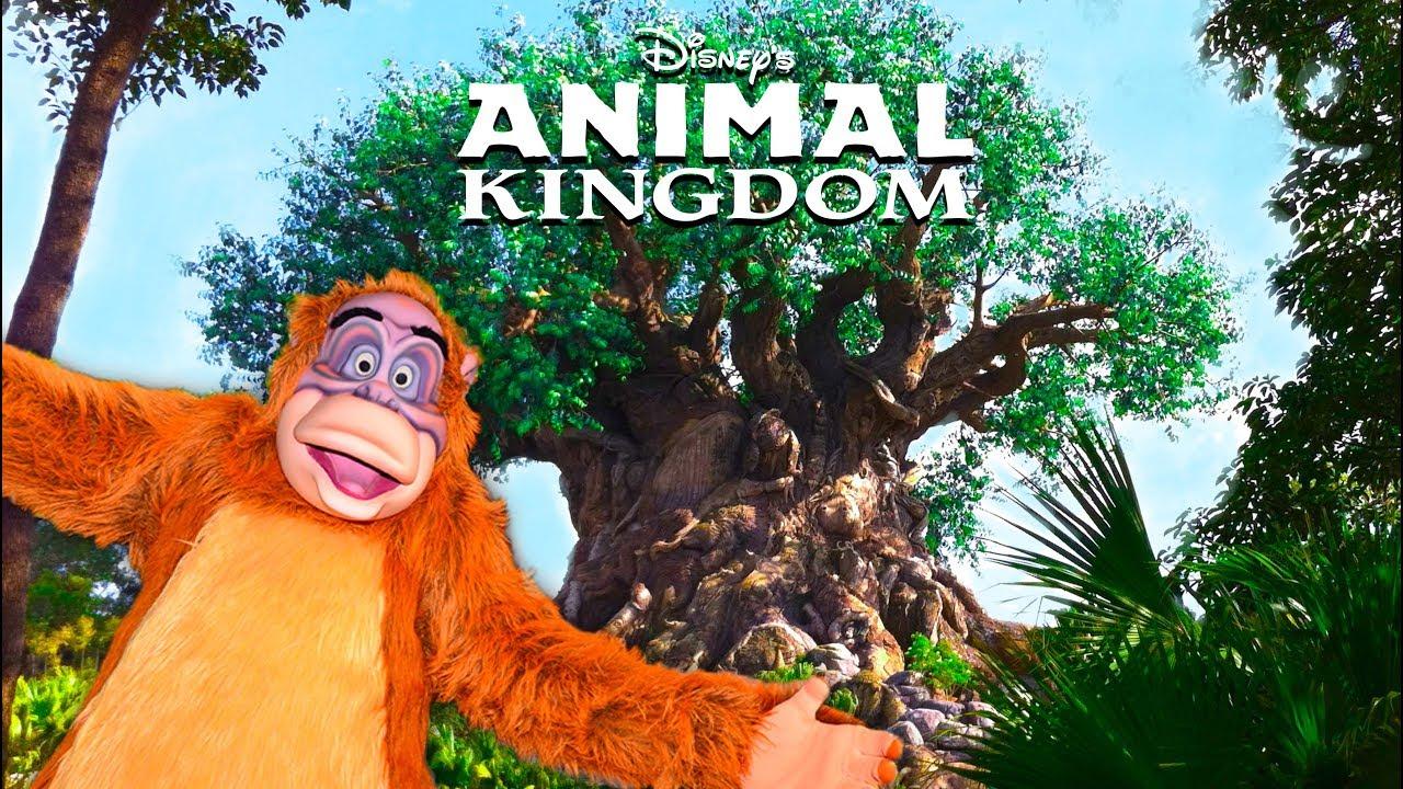 Top 10 Best Disney S Animal Kingdom Secrets Walt Disney World
